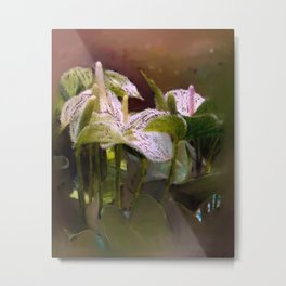 Anthuriums Metal Print