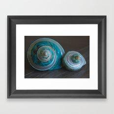 Blue and Green Seashells Framed Art Print