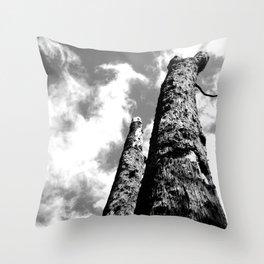 Duo Throw Pillow
