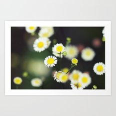 Sweet and Wild Art Print