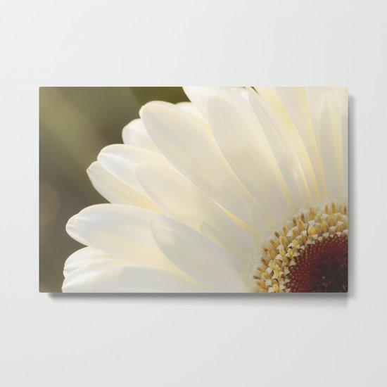 White Daisy in Love Metal Print