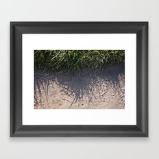 The Grass and it's Shadow Framed Art Print