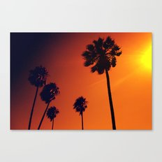 Palm Trees in the Sun Canvas Print