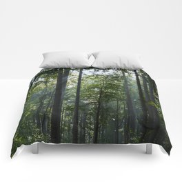 Green forest shrouded the sun. Comforters