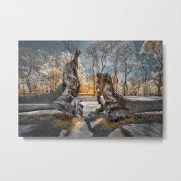Cracked Tree Metal Print