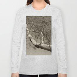 Birch tree #01 Long Sleeve T-shirt