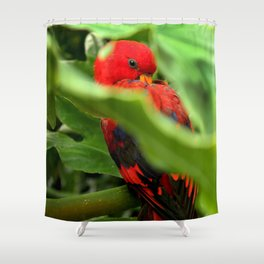 Red Lory Shower Curtain
