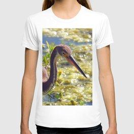 Tri-Color Heron T-shirt