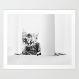 A Moment of Rest For the Smallest of Creatures Art Print