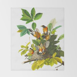 Vintage Scientific Bird Botanical Illustration Throw Blanket
