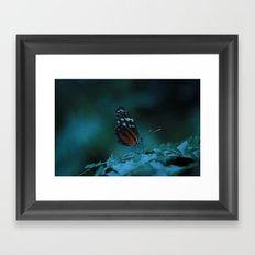 Delicate Darkness Framed Art Print