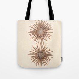 Naturalist Sea Urchins Tote Bag