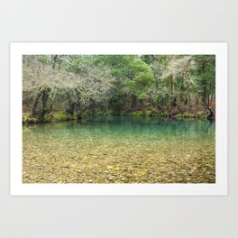 Tranquility in the emerald river Art Print