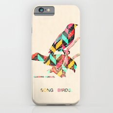 Song Birds iPhone 6 Slim Case