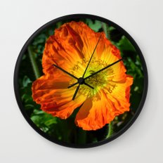 Orange Poppy II Wall Clock