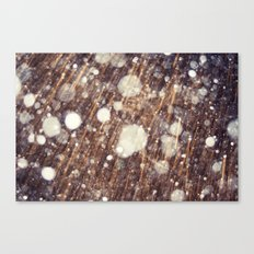 Snow talk Canvas Print