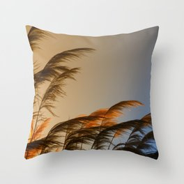 Sunset in autumn. Pampa grass Throw Pillow