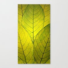 Every Leaf a Flower Canvas Print