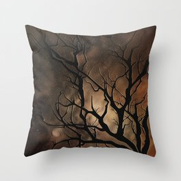 After The Rain, There Is Always Sushine Throw Pillow
