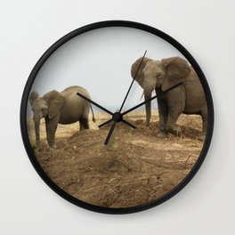 Elephant friends Wall Clock