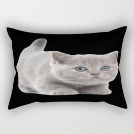 Brittish Shorthair Rectangular Pillow