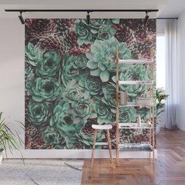 Succulent Sempervivum Plants Wall Mural