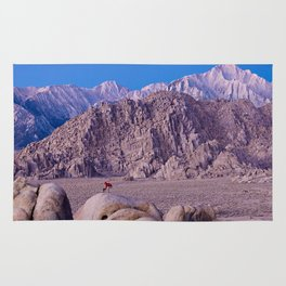 Photographer setting up a shot at Lone Pine, CA. (movie Flats) Rug