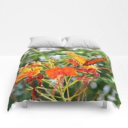 Orange Wings Comforters
