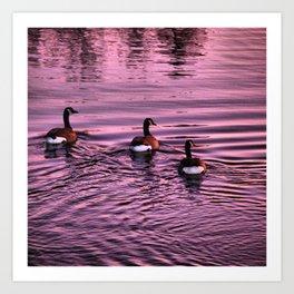Ducktails Art Print