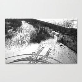 Chicago, 2014 Canvas Print