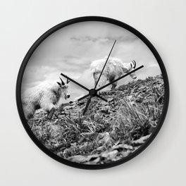 MOUNTAIN GOATS // 4 Wall Clock