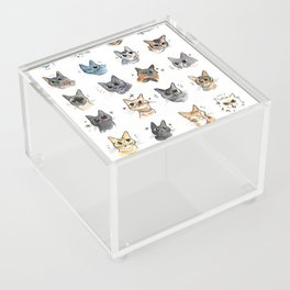 50 cat bleps! Acrylic Box