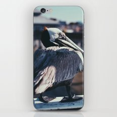 Fort Myers iPhone Skin