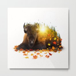 Equinox | Buffalo Metal Print