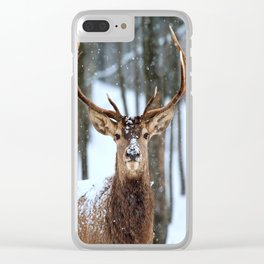 Beautiful Deer in Forest Clear iPhone Case