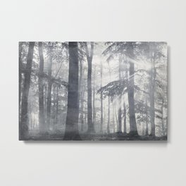 Forest of LIGHT Metal Print