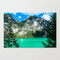Window To The Wild Canvas Print