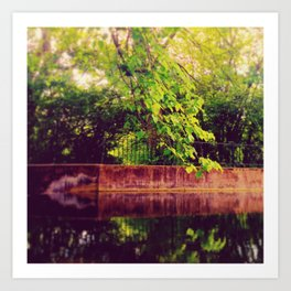 .pond branched. Art Print