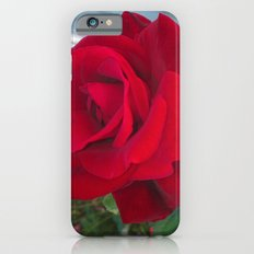 First Rose Slim Case iPhone 6s