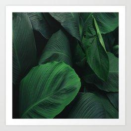 Green Nature Deep Leaves Art Print