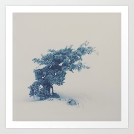 Snow Creatures Art Print