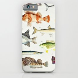 Illustrated Colorful Southern Pacific Exotic Game Fish Identification Chart No. 2 iPhone Case