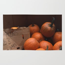 Pumpkins In a Box! Rug