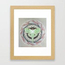 Luna Moth Mandala Framed Art Print