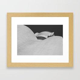 Goudy 2 Framed Art Print