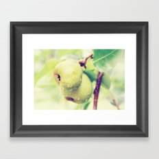 Juicy Snack Framed Art Print