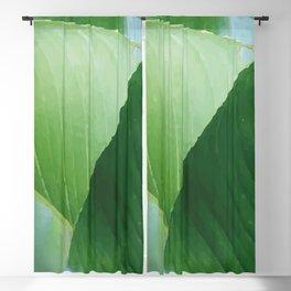 Big Banana Leaves green Blackout Curtain