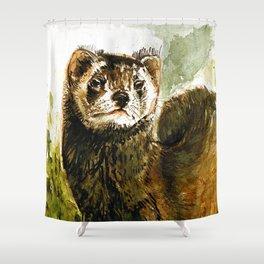 European Polecat Shower Curtain