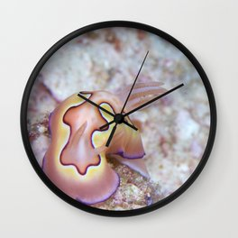 Perfect little chromodoris Wall Clock