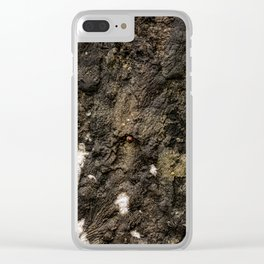 Living on Concrete Clear iPhone Case